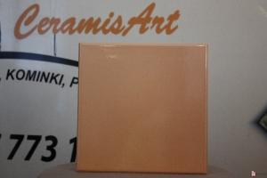 Kafel TAFLA środkowy brzoskwinia 22x22 cm
